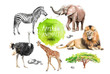 canvas print picture - watercolor illustration of wildlife in Africa: zebra, lion, ostrich, elephant, giraffe, southern savannah wood and stones, a set of drawings from the hands of animals in the zoo