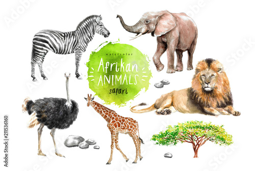Photo  watercolor illustration of wildlife in Africa: zebra, lion, ostrich, elephant, g