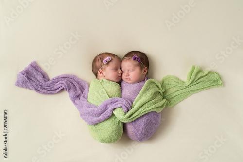 Vászonkép Fraternal Twin Newborn Girls