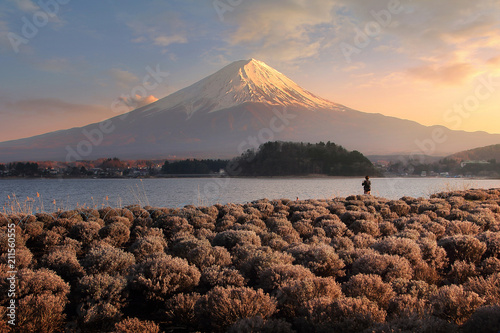 Foto  Beautiful scenery during sunset of Mountain Fuji and flower field at kawaguchiko lake in Japan This is a very popular for photographers and tourists
