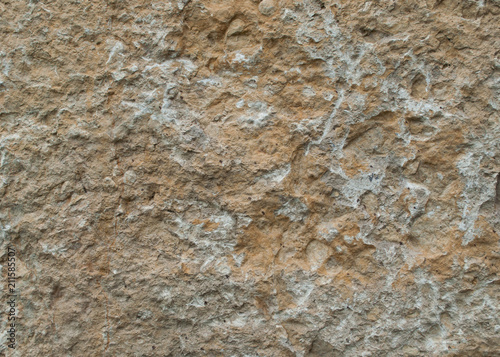 In de dag Stenen natural stone slab texture lime rock