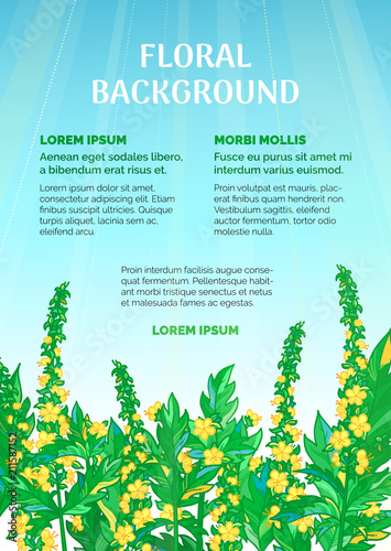 Photo Vector summer floral background.