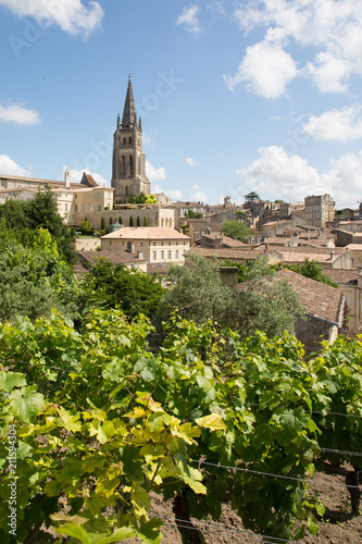 Photo Vineyard landscape Saint Emilion near Bordeaux in France UNESCO World Heritage s