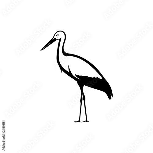 Obraz na plátně vector stork silhouette