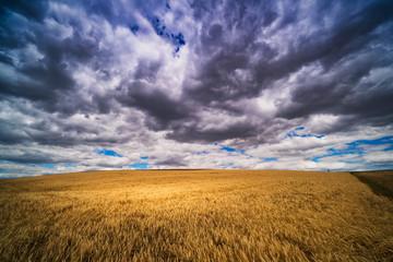 Naklejka Landschaft mit dramatischem Himmel