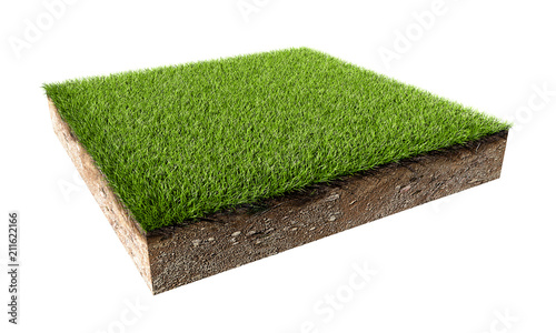 Fotografia Green Grass Land Piece Isolated on White Background.