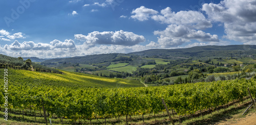 Deurstickers Toscane Landscape and Vineyards in Tuscany, Italy