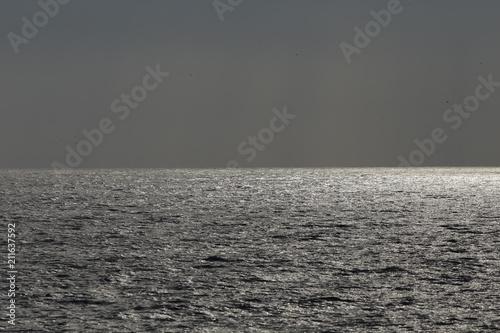 Poster Mer / Ocean Glistening sea in an overcast evening