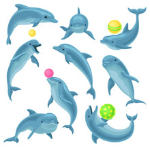 Cute Blue Dolphins Set, Dolphi...