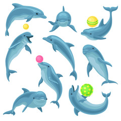 Fototapeta Delfin Cute blue dolphins set, dolphin jumping and performings tricks with ball for entertainment show vector Illustration on a white background