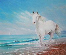 Painting A Horse Running On Th...