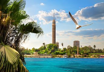 Nile in Cairo