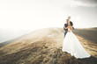 canvas print picture - Wedding couple posing on sunset at wedding day. Bride and groom in love