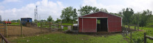 Pig Farm Fenced Pen Red Barn P...