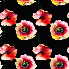 Fototapeta Popularne Seamless pattern with Beautiful Poppy flowers