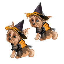 Yorkshire Terrier In Witch Costume Isolated On White Background. Cute Animated Dog In A Witch Hat. Sketch For Greeting Card, Festive Poster Or Party Invitations. The Attributes Of Holiday Halloween.
