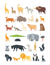 Flat African, Jungle And Forest Animals. Cute Mammals And Reptiles. Wild Fauna Vector Set Isolated