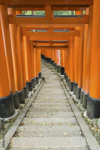Spoed Foto op Canvas Japan Torii gate in Fushimi Inari Shrine, Kyoto, Japan