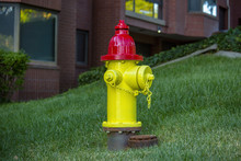 Yellow And Red Fire Hydrant Do...