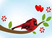 Cardinal Bird Valentines Love Card Background