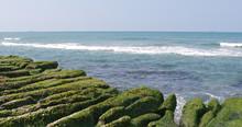 Beautiful Green Reef In New Taipei City Of Taiwan With Sunshine