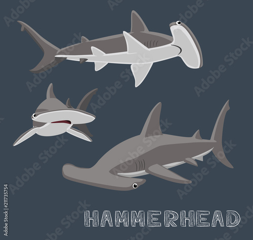 Obraz Hammerhead Shark Cartoon Vector Illustration - fototapety do salonu