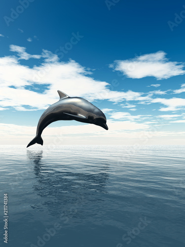 Fototapeta premium dolphin jumping out of the water