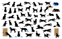 Different Dogs Silhouettes Set...