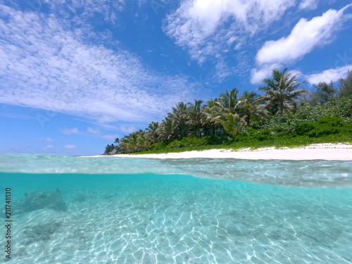 Canvas Prints Green coral HALF UNDERWATER: Summer sun shines on calm turquoise ocean and tropical beach.