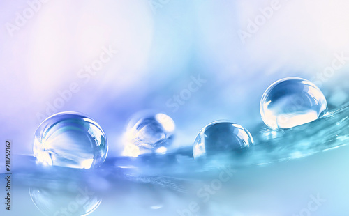 Fotografia Beautiful large transparent water drops or rain water on blue purple turquoise soft background, macro
