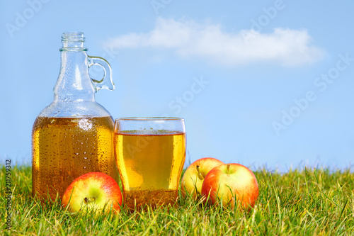 Foto op Plexiglas Bier / Cider Flagon and pint of apple cider