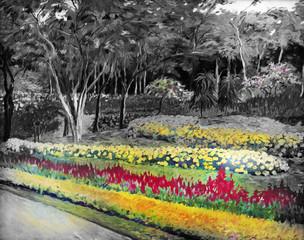 FototapetaThe garden background black and white flowers in the park.