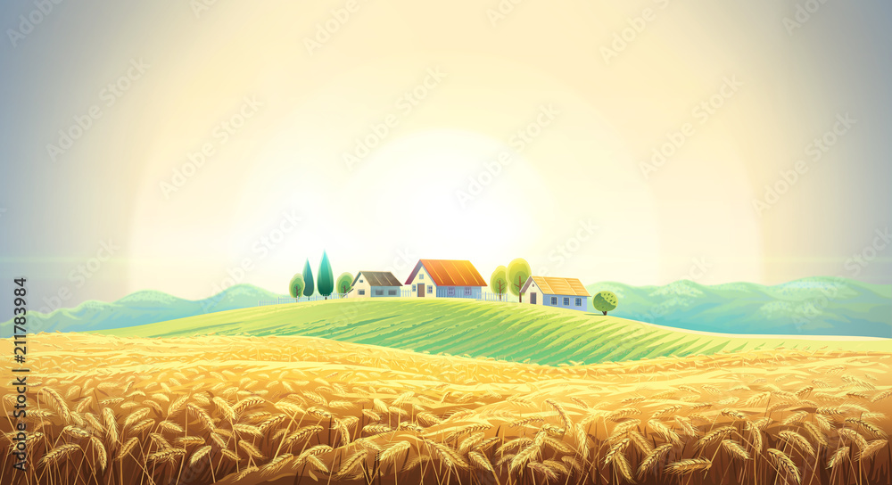 Fototapety, obrazy: Rural landscape with a wheat field and a village on a hill.