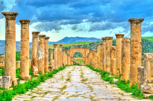 Poster Algérie Berbero-Roman ruins at Djemila in Algeria