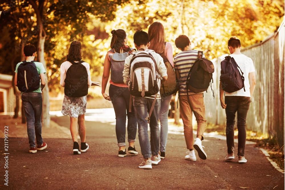 Fototapeta Rear view of school kids walking on road in campus