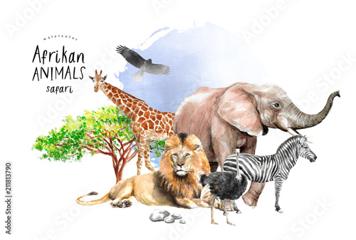 Fotografía  watercolor illustration of African animals: zebra, lion, ostrich, elephant, gira