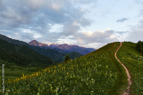 Foto op Plexiglas Blauwe hemel Mountain forest landscape during sunrise. Summer landscape in the mountain track Kok Zhailau near the city of Almaty, Kazakhstan, central Asia
