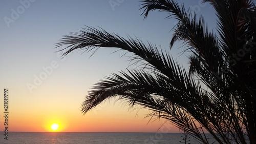 In de dag Ochtendgloren Sunrise under the palm trees.