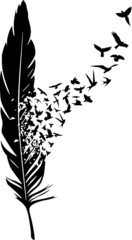 Naklejka Do salonu Feder mit Vogelschwarm