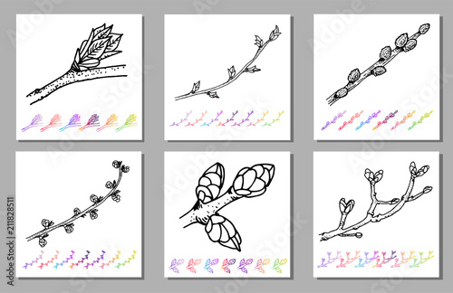 Fototapeta Vector Set of Kidney bud black pattern in the plant design. Hand painted spring garden flora. Black sletch isolated on whie background with gradient colorful elements Trunks and twigs for your design. obraz