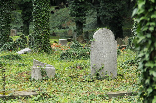 Deurstickers Begraafplaats some headstones covered with ivy on the old jewish cemetery in Cieszyn, Poland