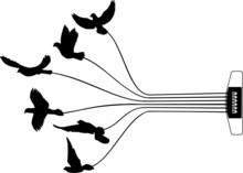 Gitarren- Seite Mit Vögel