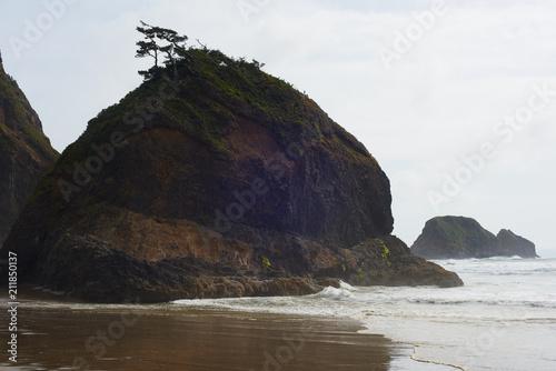 Tuinposter Kust Storm-weathered sea stack, Short Beach, Tillamook County, Oregon