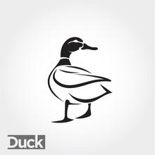 Duck, Goose, Swan Logo Art