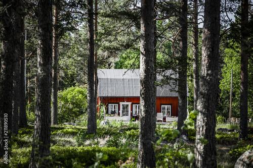Staande foto Europa Rotes Haus im Wald