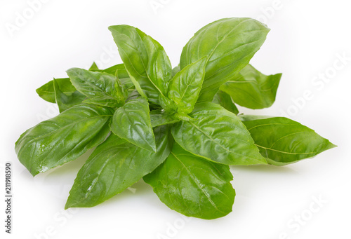 Poster Aromatische Fresh basil on white background