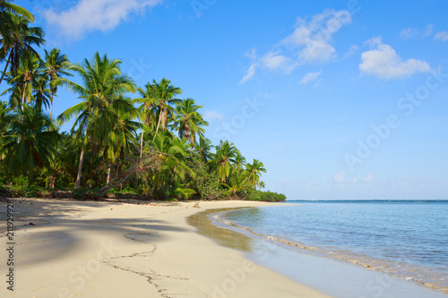 Staande foto Strand Green palm trees on caribbean beach.