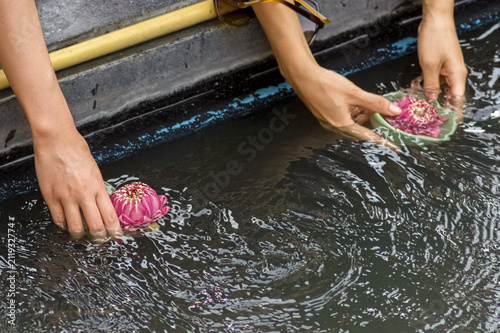 Photo  Bangkok, Thailand, Erawan Museum offerings of lotus flowers and coins are deposi