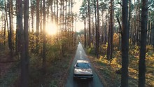 Old Car Rides In Forest.
