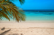 Palm leaves, turquoise lagoon, white beach. Perfect background.